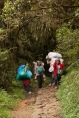 These lady porters carrying a load as heavy as 22 kilos are among the 300 locals making a living from toursim in Mt. Pulag. DENR officer Emirita Albas said that Mt. Pulag can't be closed to give these people alternative livelihood that can help prevent further degradation of the protected area from uncontrolled farming.